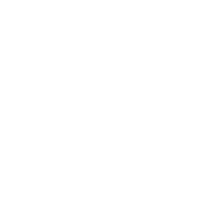 Council on Foundations National Standards Seal
